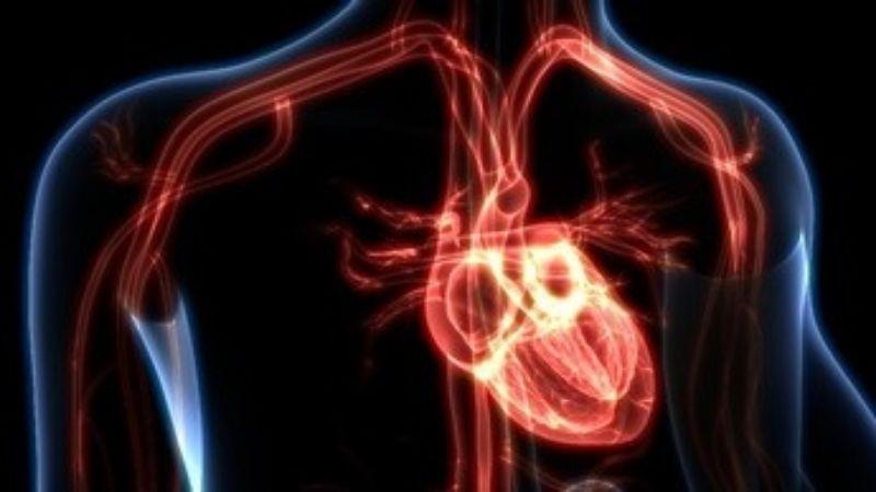 Manfaat Puasa untuk Kesehatan Jantung dan Pembuluh Darah