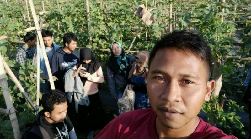 Asep Ajak Muda-mudi Tanam Buah Melon di Tengah-tengah Pandemi