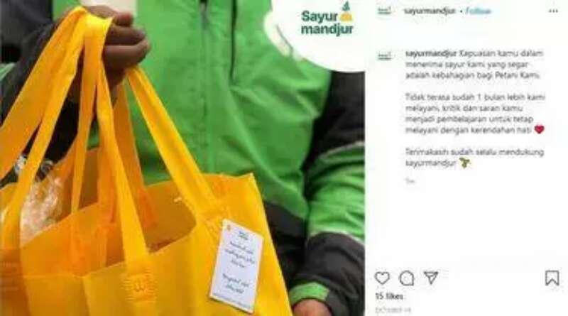 PELUANG: Jual Sayur Hidroponik, Mellie Leonita Raup Omzet Jutaan per Bulan