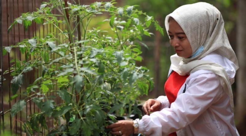 Yena: Sektor Pertanian Dapat Menggerakkan Ekonomi Masyarakat