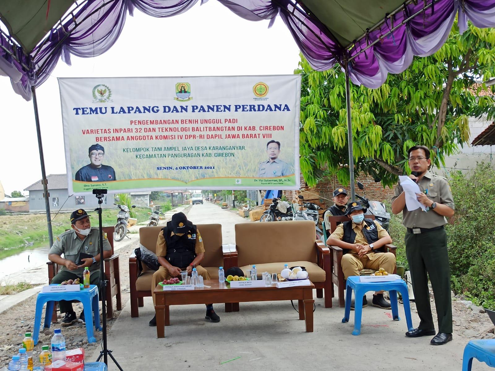 BPTP Jabar Gelar Panen Perdana Beserta Kelompok Tani Ampel Jaya di Cirebon